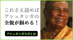 アシュタンガヨガとは? ~これさえ読めば全貌が掴める!~